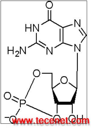 cGMP_NonAcetylated