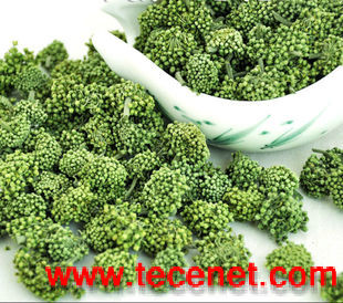 南京泽朗供应优质产品三七总皂苷88105-29-7