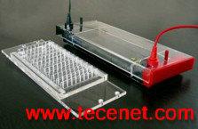 快速PCR水平电泳槽/血液检测电泳槽