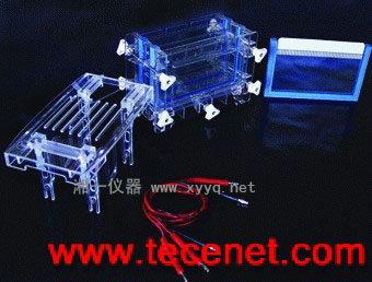 DYCZ-30C 双板夹芯式垂直注塑电泳仪(槽)