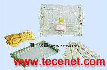 湖南单板夹芯式垂直电泳仪(槽)(大号)