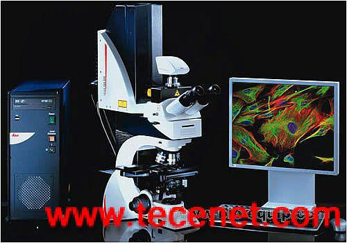 徕卡Leica TCS SPE共聚焦系统