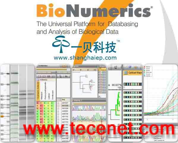 BioNumerics生物信息分析软件