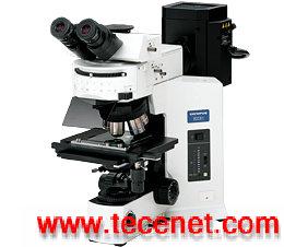 双目生物显微镜BX53奥林巴斯OLYMPUS