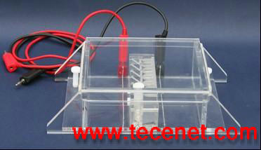 DNA回收电泳槽