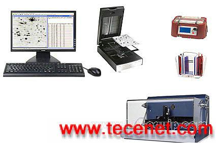 单双向电泳分析系统MSD-10