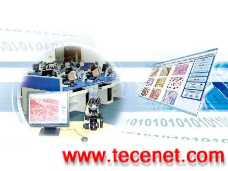 Motic数码显微互动教室网络版