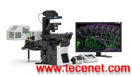 奥林巴斯显微镜,共聚焦显微镜
