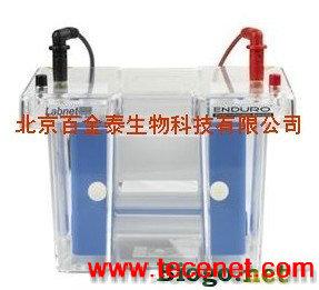 垂直电泳仪/垂直电泳系统/Labnet垂直电泳仪
