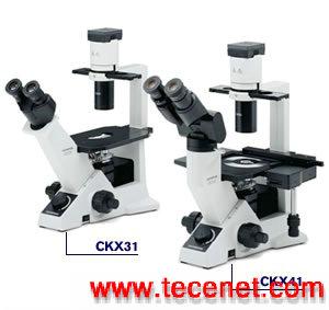 奥林巴斯CKX41倒置显微镜,CKX31说明书价格