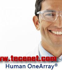 华联OneArray人类表达谱芯片(HOA)