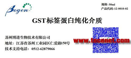 GST标签蛋白纯化介质
