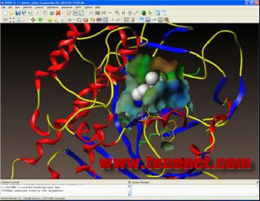 SYBYL-X药物与分子设计专业工具