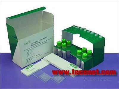 冠心病相关基因型检测芯片试剂盒