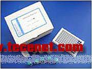 美国Beacon三聚氰胺定量检测试剂盒
