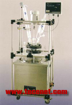 变频恒速恒温真空搅拌反应装置