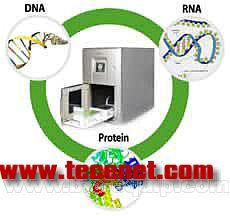 全自动核酸与蛋白质提取仪(SFDA受理)