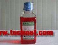 细胞培养常规耗材(培养瓶,离心管,等)