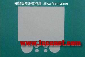 硅胶膜 silica membrane 核酸 DNA RNA 吸附