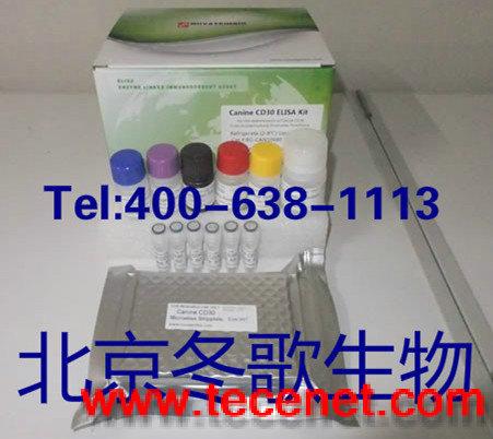 人基质金属蛋白酶抑制因子4(TIMP-4)试剂盒