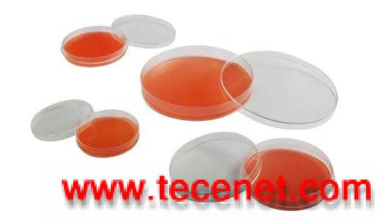 一次性细胞培养皿