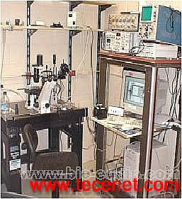 单细胞膜片钳记录分析系统