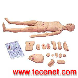 男女性护理人训练模型,高级护理模拟人