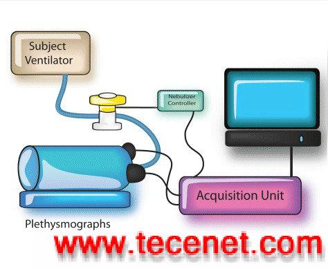 动物气道阻力与肺顺应性检测系统