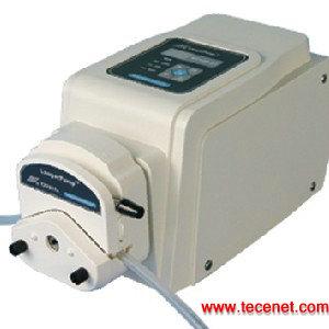 基本型蠕动泵BT100-2J