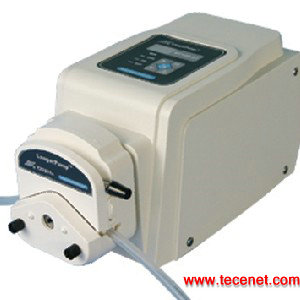 兰格蠕动泵 WT600-2J