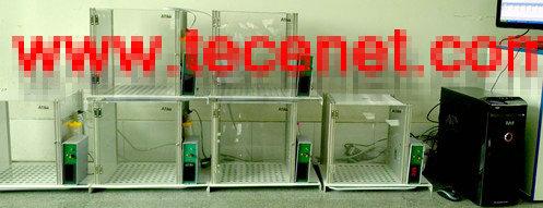 饮水冲突实验系统