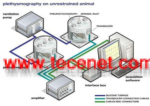 清醒动物呼吸测量系统
