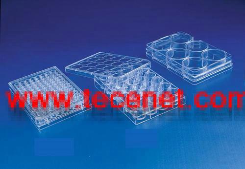 Corning细胞培养耗材特价促销