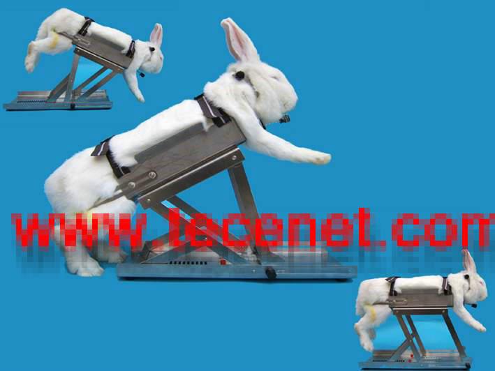 不锈钢兔固定器
