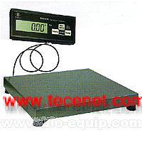 电子非标台秤、电子秤/秤