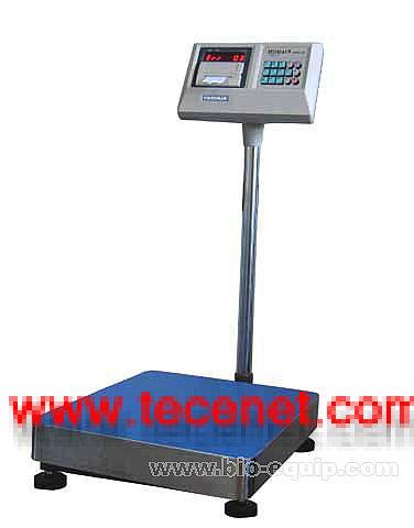 电子打印秤、电子秤/13524183100