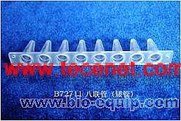 荷兰进口PCR八排管耗材