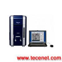 TM3000 台式扫描电子显微镜