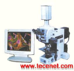 骨测量高级骨形态视频系统