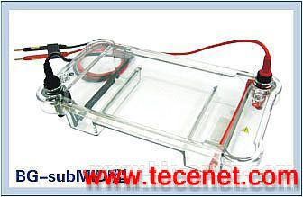 BG-subMIDI型水平电泳仪