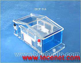 琼脂糖电泳仪(槽)(微型)