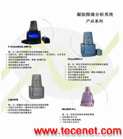 凝胶图像分析系统