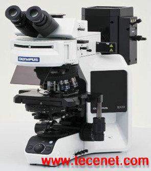 生物显微镜BX53