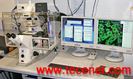 活细胞工作站cell observer