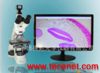 专供生物显微镜可拍照测量高倍高清光学系统