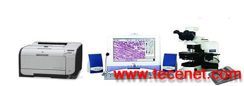 倒置扫描显微镜系统