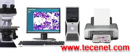 全自动细胞形态检测分析平台