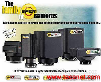 荧光定量型冷CCD摄像头