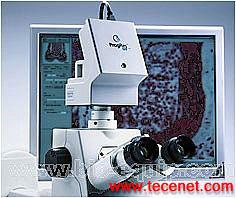 显微成像用德国ProgRes专业CCD