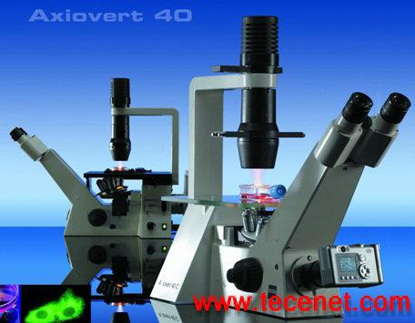 Axiovert 40 倒置显微镜